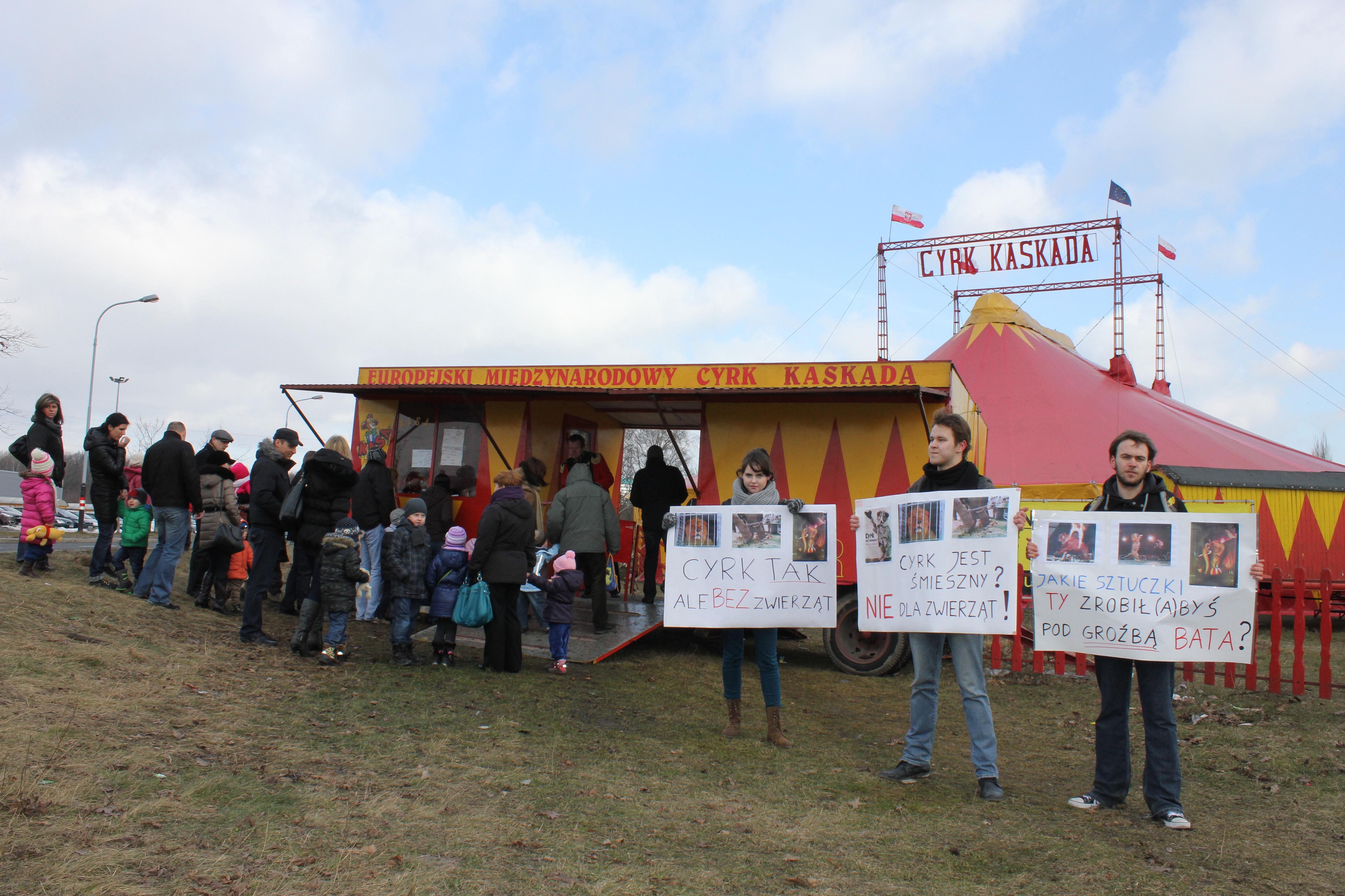 Pikieta pod cyrkiem 2013