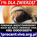1% dla zwierząt
